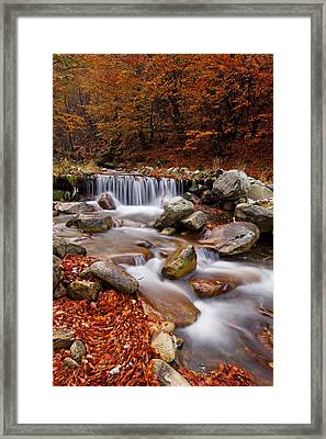 October Stream Framed Print by Mircea Costina Photography