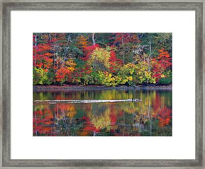 Framed Print featuring the photograph October's Colors by Dianne Cowen