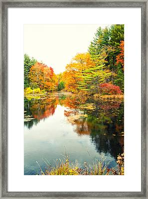 Octobers Paintbrush Framed Print by Karol Livote