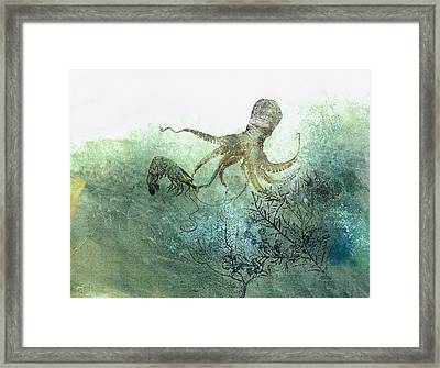 Octopus And Shrimp Framed Print
