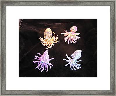 Octopus Buds Framed Print by Dan Townsend