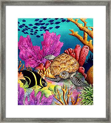 Odd Couple Framed Print by Carolyn Steele