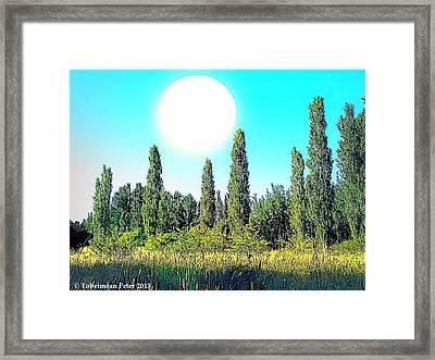 Odd Landscape Framed Print by Tobeimean Peter