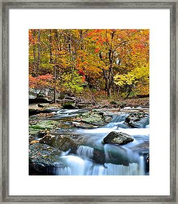 Odd Shape Framed Print by Frozen in Time Fine Art Photography