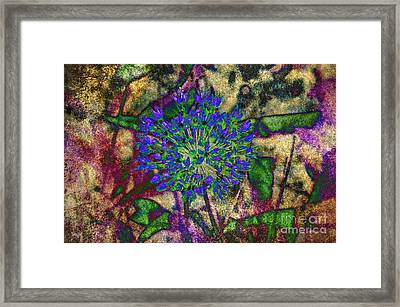 Ode To A Flower The Abstract Framed Print by Andee Design