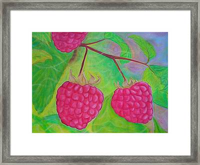 Ode To A Raspberry Framed Print by Rachel Cruse