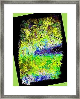 Ode To Nature Framed Print by Will Borden