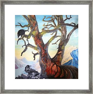 Ode To The Whitebark Pine Framed Print