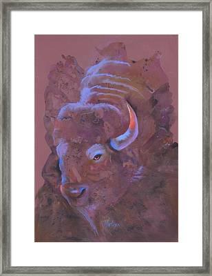 Ode To White Buffalo Framed Print