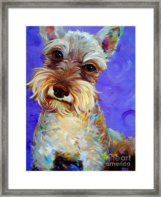 Odie Framed Print by Robert Phelps