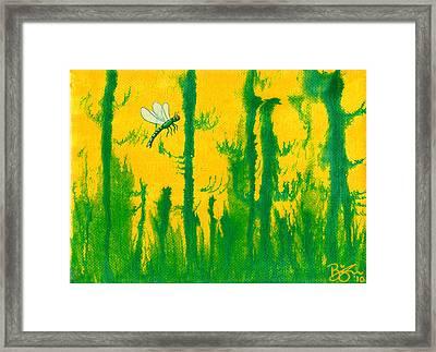 Odonata Framed Print by Lance Bifoss