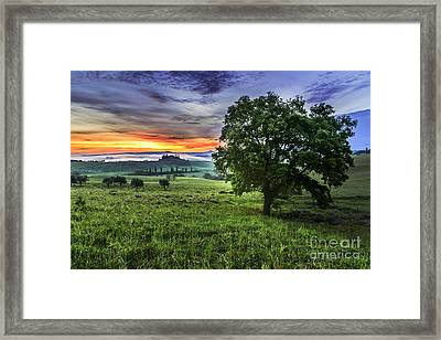 Of Moon And Dawn Framed Print