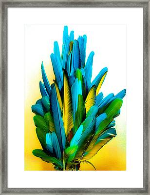 Yellow And Turquoise Framed Print by Paulette Maffucci