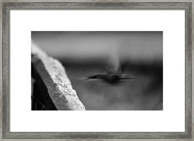 Off.. Framed Print