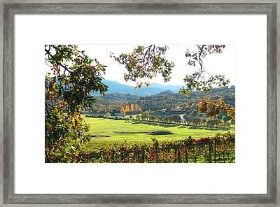 View From Carpenter Hill Road Framed Print by Brooks Garten Hauschild