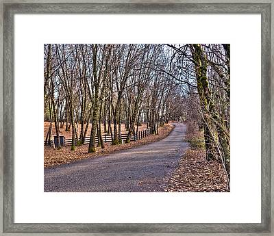 Off Rattle Snake Road Framed Print