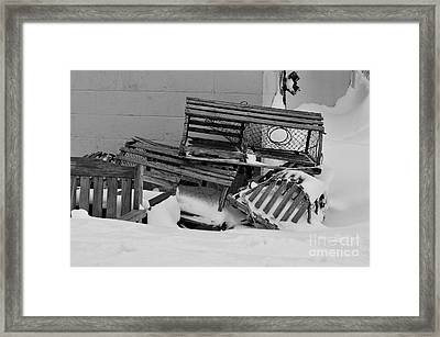 Retired Lobster Traps Framed Print by Catherine Reusch Daley