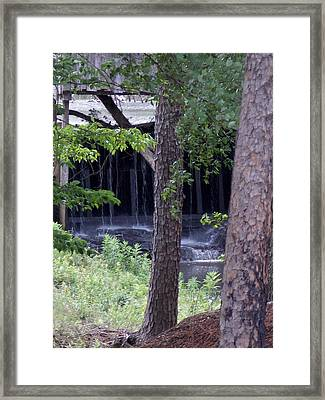 Off The Beaten Path Framed Print by John Glass