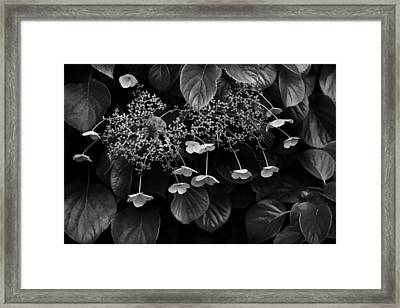 Off The Wall Framed Print by Don Powers