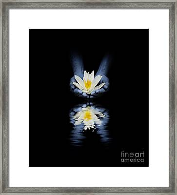 Offering Of The Lotus Framed Print