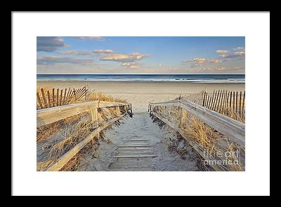 Maine Coast Framed Prints