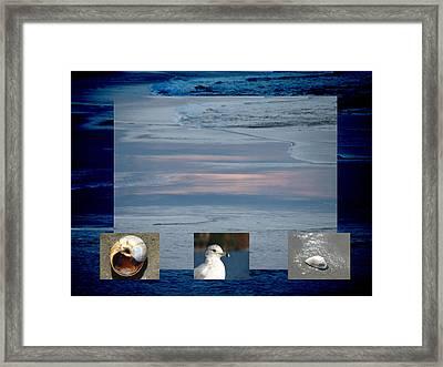Ogunquit Beach Framed Print