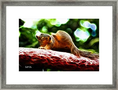 Framed Print featuring the digital art Oh Buggers I Itch - Fractal - Robbie The Squirrel by James Ahn