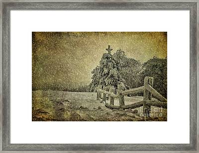 Oh Christmas Tree In Snow Framed Print by Lois Bryan
