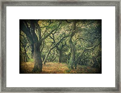 Oh How They Danced Framed Print by Laurie Search