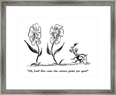 Oh, Lord!  Here Comes That Common Garden Pest Framed Print