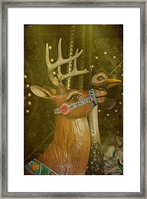 Oh My Deer Framed Print by Jan Amiss Photography