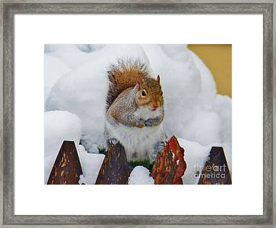 Oh No   Early Snow Framed Print