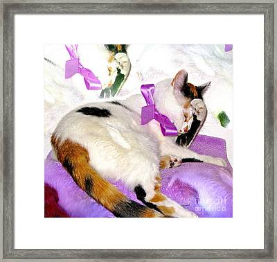 Oh No Not A Ribbon Framed Print by Phyllis Kaltenbach