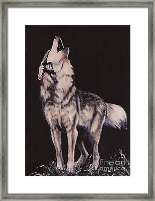 Framed Print featuring the painting Oh No....coyote Art by DiDi Higginbotham