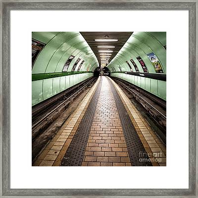 Oh So Quiet Framed Print by John Farnan