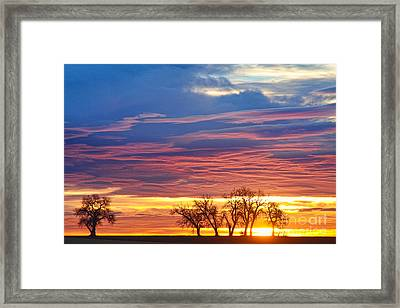 Oh What A Beautiful Morning Framed Print by James BO  Insogna