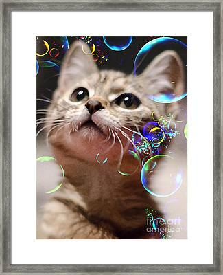 Oh What A Wonderful World Framed Print