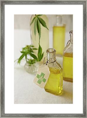 Oil Infused With Marijuana Framed Print by Lew Robertson