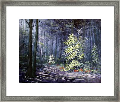 Oil Painting - Forest Light Framed Print