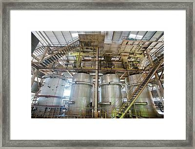 Oil Palm Processing Factory Framed Print by Scubazoo/science Photo Library
