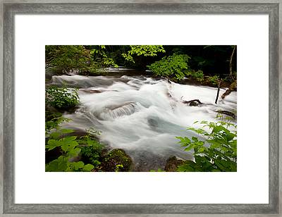 Framed Print featuring the photograph Oirase Stream by Brad Brizek