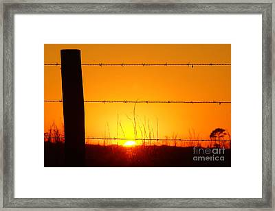 Okeechobee Farm Sunset Framed Print by Lynda Dawson-Youngclaus