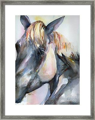 Grey Horse Painting Oklahoma Sunshine Framed Print
