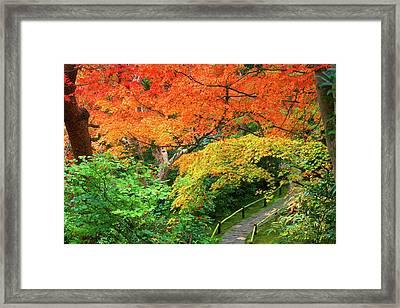 Okochi Sanso, Arashiyama, Kyoto, Japan Framed Print by Rob Tilley