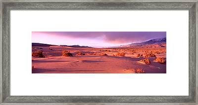 Olancha Sand Dunes, Olancha Framed Print