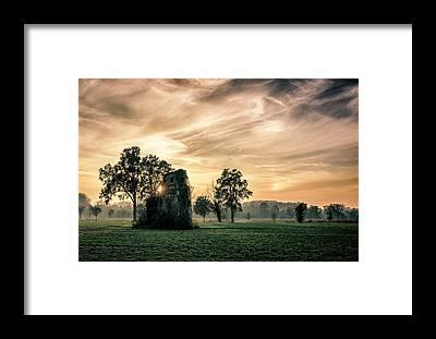 Vegetation Framed Prints