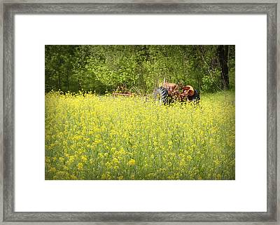 Old Allis Framed Print