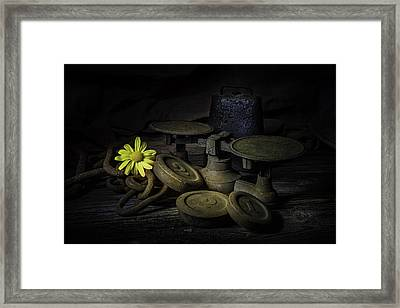 Old And Rusted Still Life Framed Print by Tom Mc Nemar