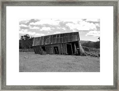 Old And Tired Framed Print by Philip Hartnett