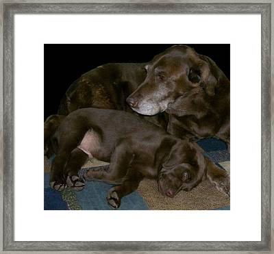 Old And Young Framed Print by Barbara S Nickerson